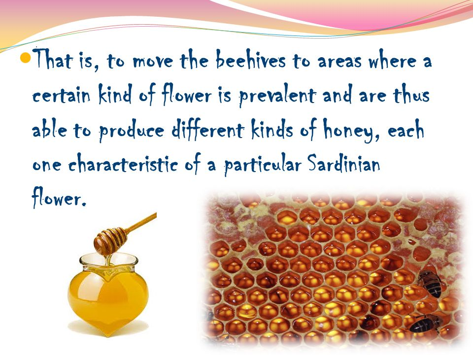 That is, to move the beehives to areas where a certain kind of flower is prevalent and are thus able to produce different kinds of honey, each one characteristic of a particular Sardinian flower.