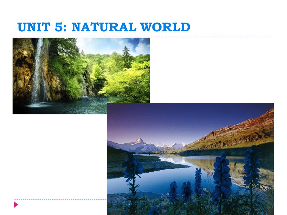 UNIT 5: NATURAL WORLD