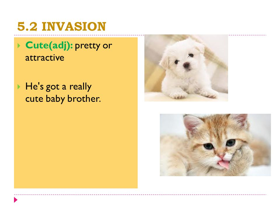 5.2 INVASION  Cute(adj): pretty or attractive  He s got a really cute baby brother.