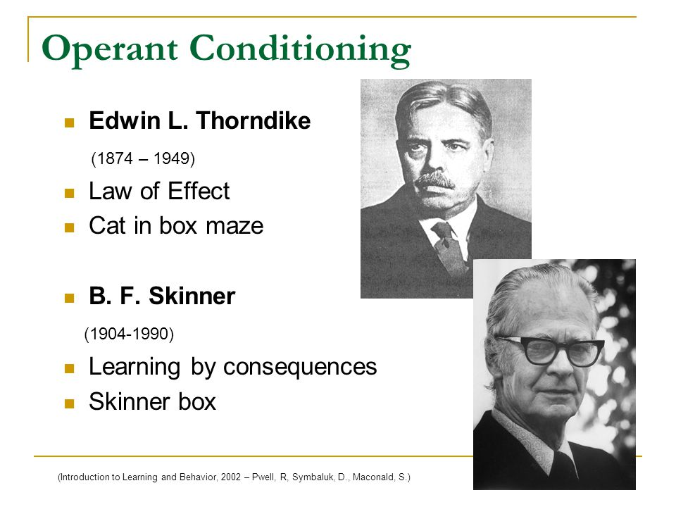 Operant Conditioning Edwin L. Thorndike (1874 – 1949) Law of Effect Cat in box maze B.