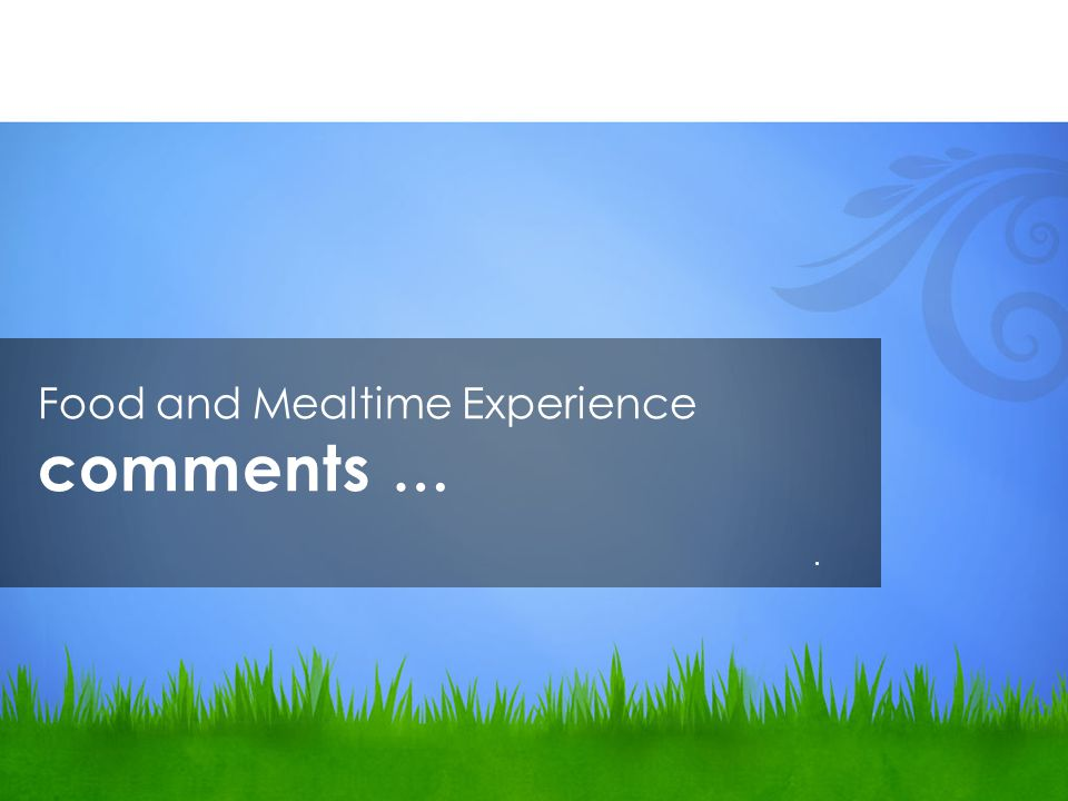 Food and Mealtime Experience comments ….