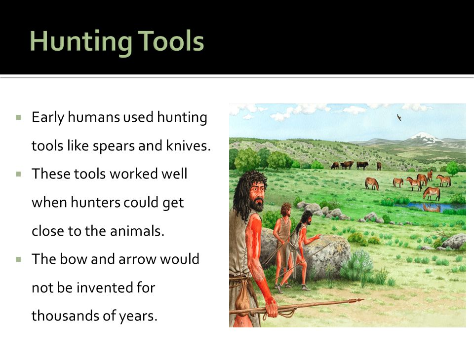  Early humans used hunting tools like spears and knives.  These tools worked well when hunters could get close to the animals.  The bow and arrow w