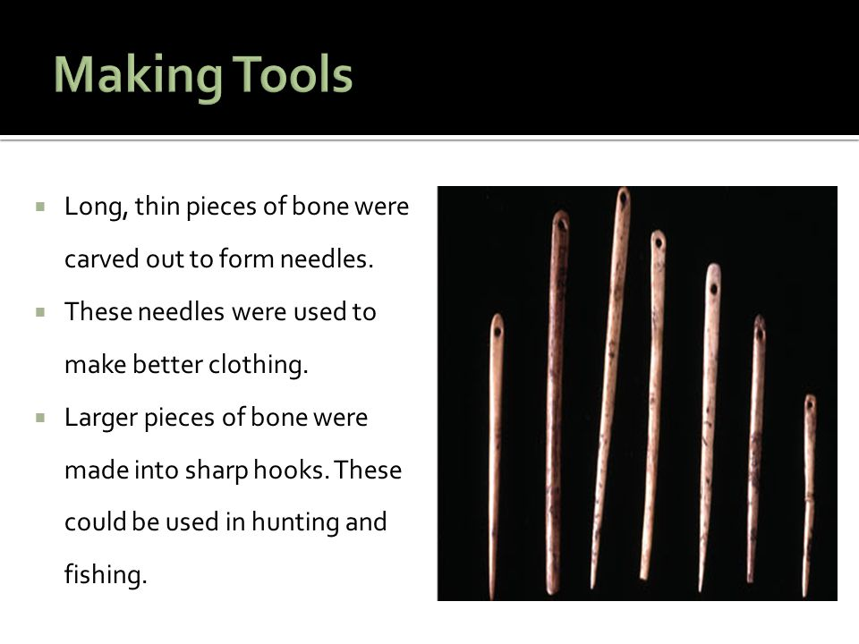  Long, thin pieces of bone were carved out to form needles.