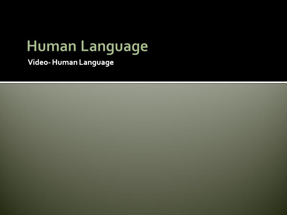 Video- Human Language