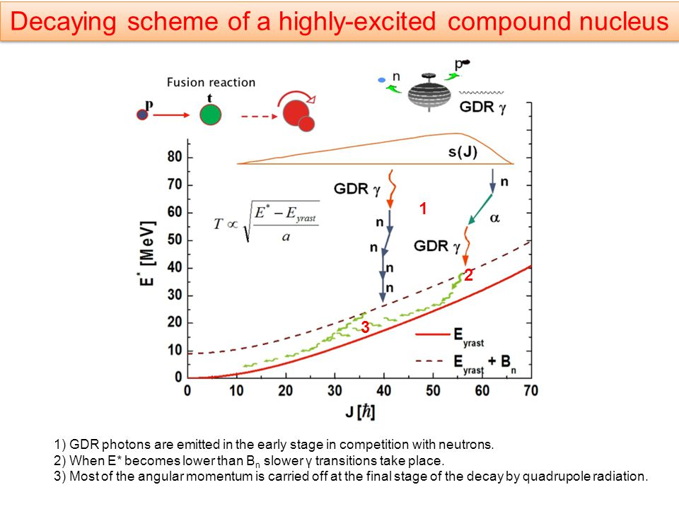 Decaying scheme of a highly-excited compound nucleus 1) GDR photons are emitted in the early stage in competition with neutrons.