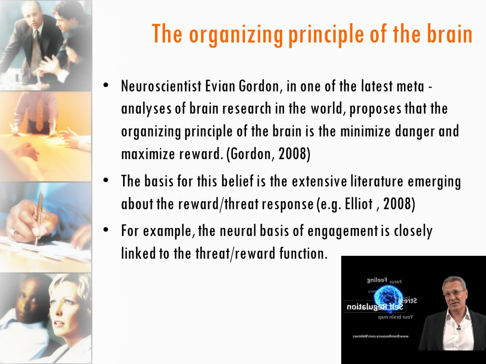 The organizing principle of the brain Neuroscientist Evian Gordon, in one of the latest meta - analyses of brain research in the world, proposes that the organizing principle of the brain is the minimize danger and maximize reward.