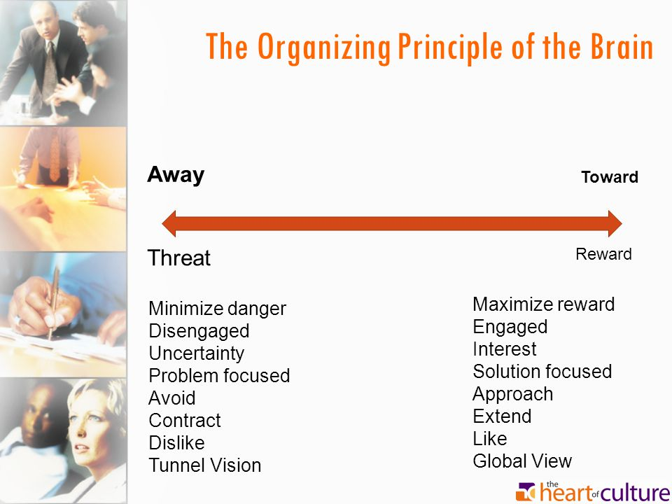 The Organizing Principle of the Brain Away Toward Threat Reward Minimize danger Disengaged Uncertainty Problem focused Avoid Contract Dislike Tunnel Vision Maximize reward Engaged Interest Solution focused Approach Extend Like Global View