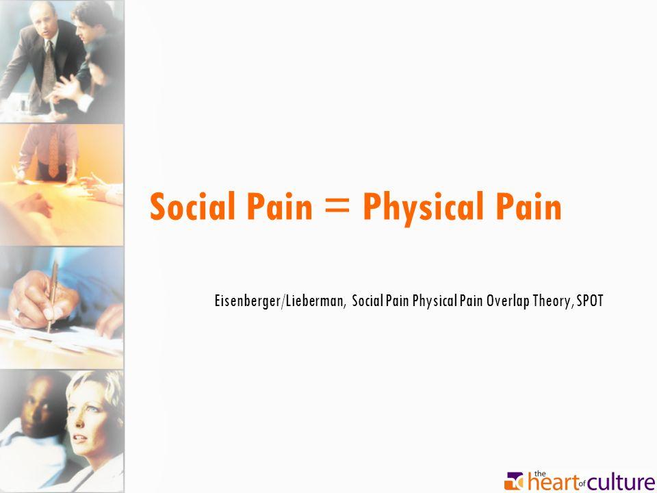 Social Pain = Physical Pain Eisenberger/Lieberman, Social Pain Physical Pain Overlap Theory, SPOT
