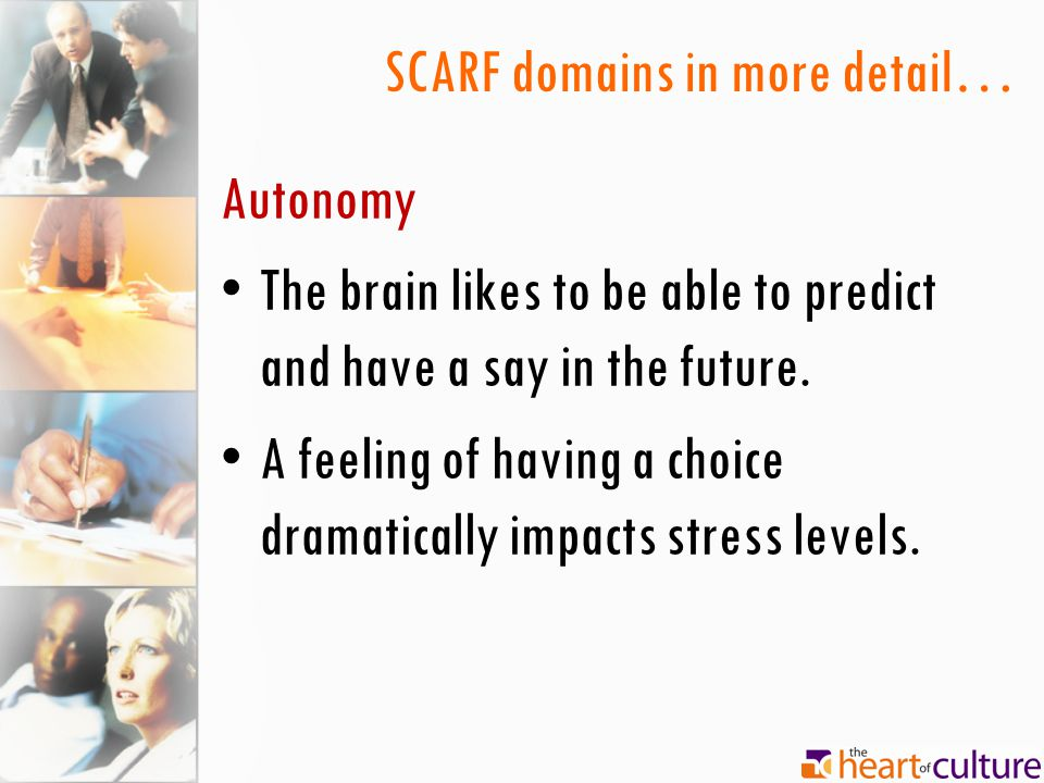 SCARF domains in more detail… Autonomy The brain likes to be able to predict and have a say in the future.