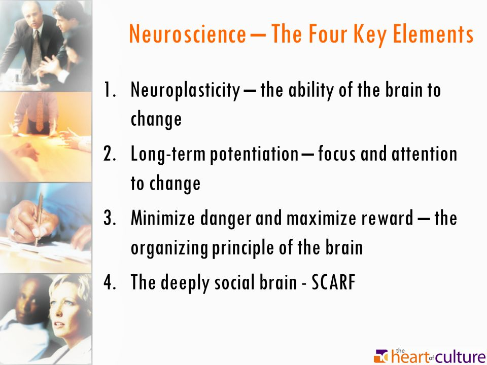 Neuroscience – The Four Key Elements 1.Neuroplasticity – the ability of the brain to change 2.Long-term potentiation – focus and attention to change 3.Minimize danger and maximize reward – the organizing principle of the brain 4.The deeply social brain - SCARF