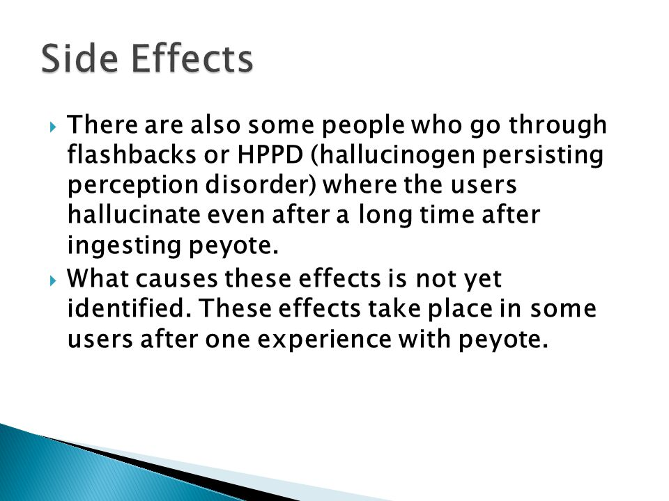  There are also some people who go through flashbacks or HPPD (hallucinogen persisting perception disorder) where the users hallucinate even after a long time after ingesting peyote.