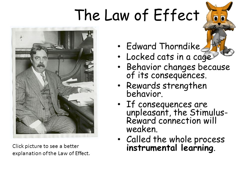 The Law of Effect Edward Thorndike Locked cats in a cage Behavior changes because of its consequences.