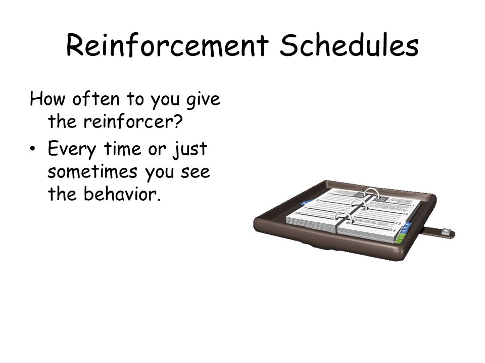 Reinforcement Schedules How often to you give the reinforcer.