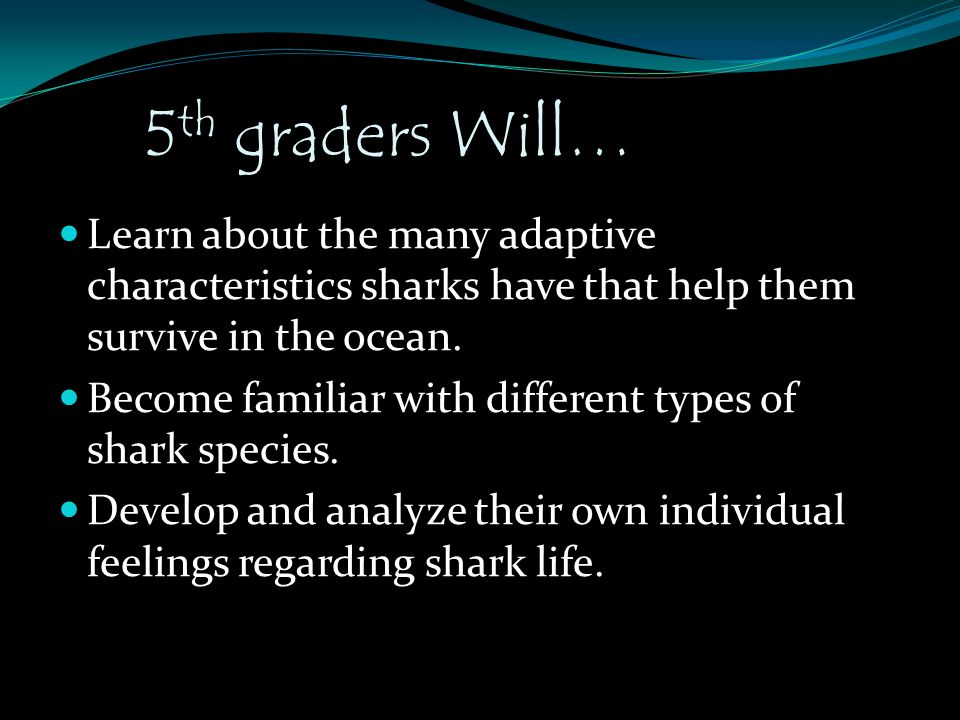 5 th graders Will… Learn about the many adaptive characteristics sharks have that help them survive in the ocean. Become familiar with different types