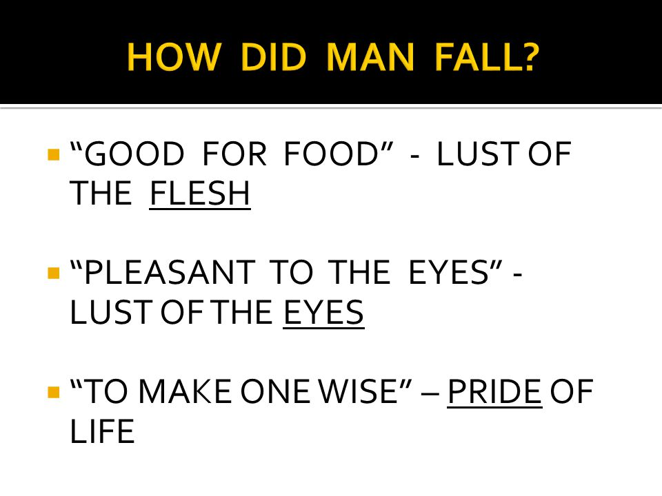 " ""GOOD FOR FOOD"" - LUST OF THE FLESH  ""PLEASANT TO THE EYES"" - LUST OF THE EYES  ""TO MAKE ONE WISE"" – PRIDE OF LIFE"