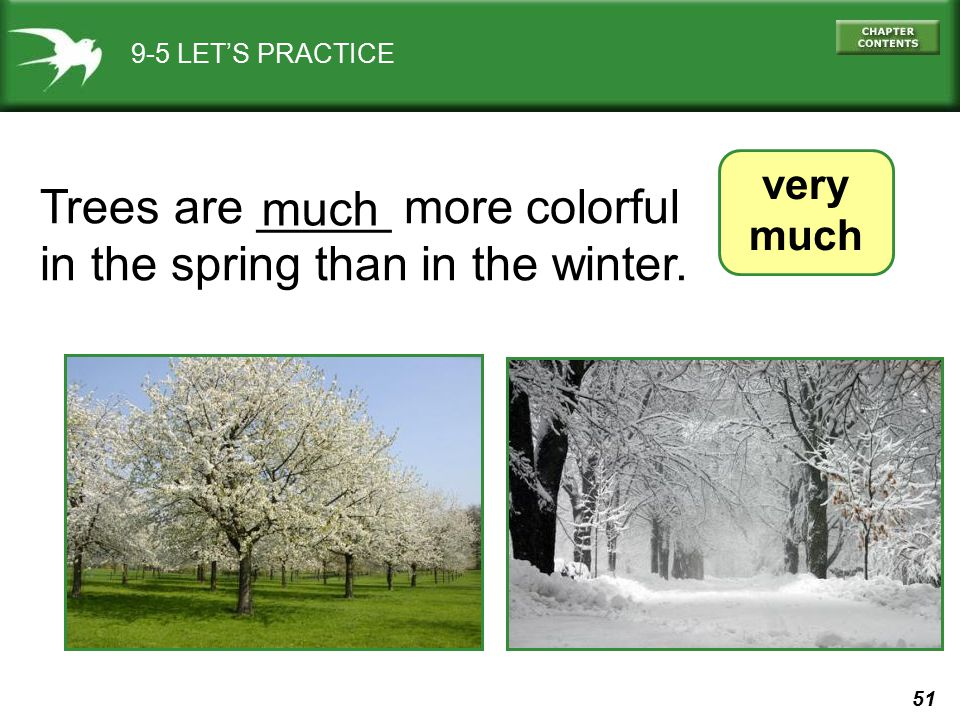 51 9-5 LET'S PRACTICE very much Trees are _____ more colorful in the spring than in the winter. much