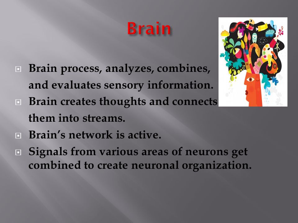  Brain process, analyzes, combines, and evaluates sensory information.