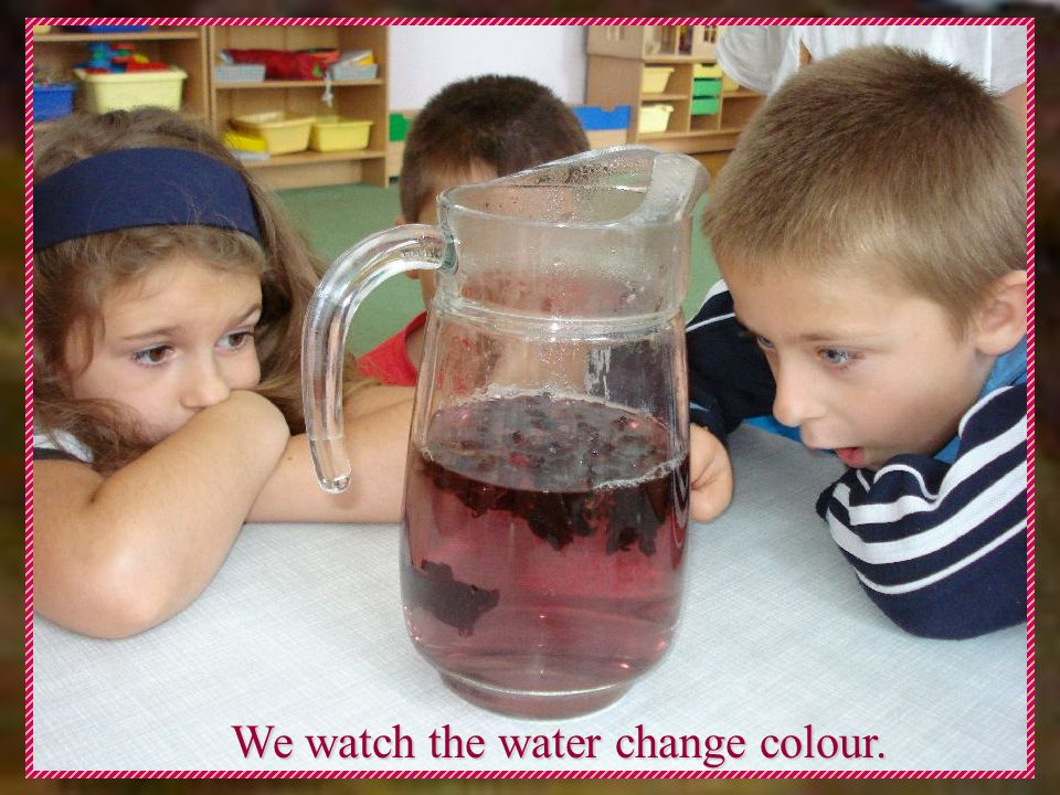 We watch the water change colour.