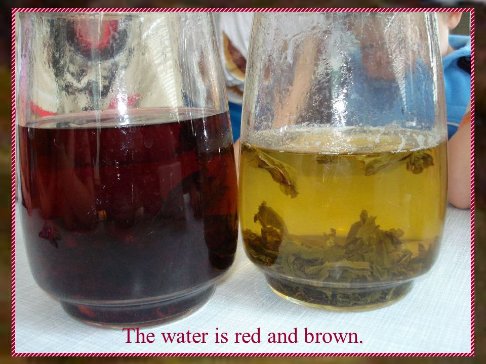 . The water is red and brown.