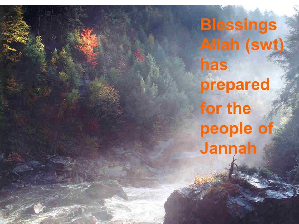 Blessings Allah (swt) has prepared for the people of Jannah
