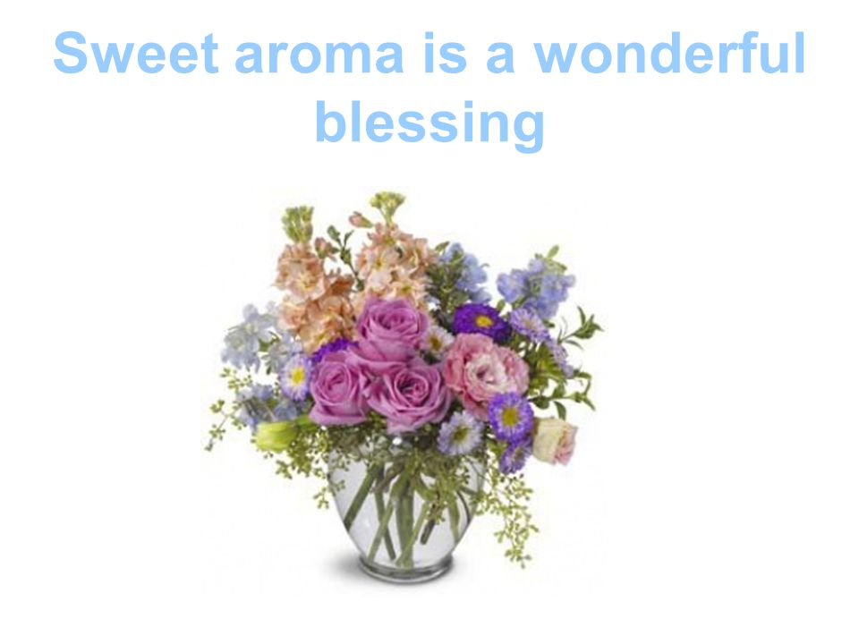 Sweet aroma is a wonderful blessing
