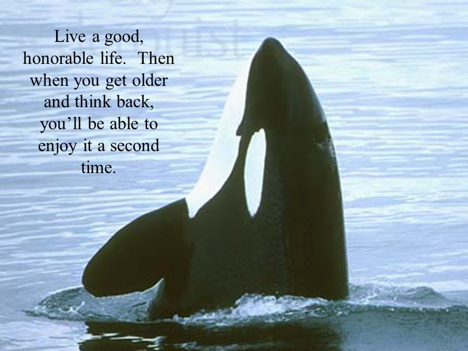 Live a good, honorable life.