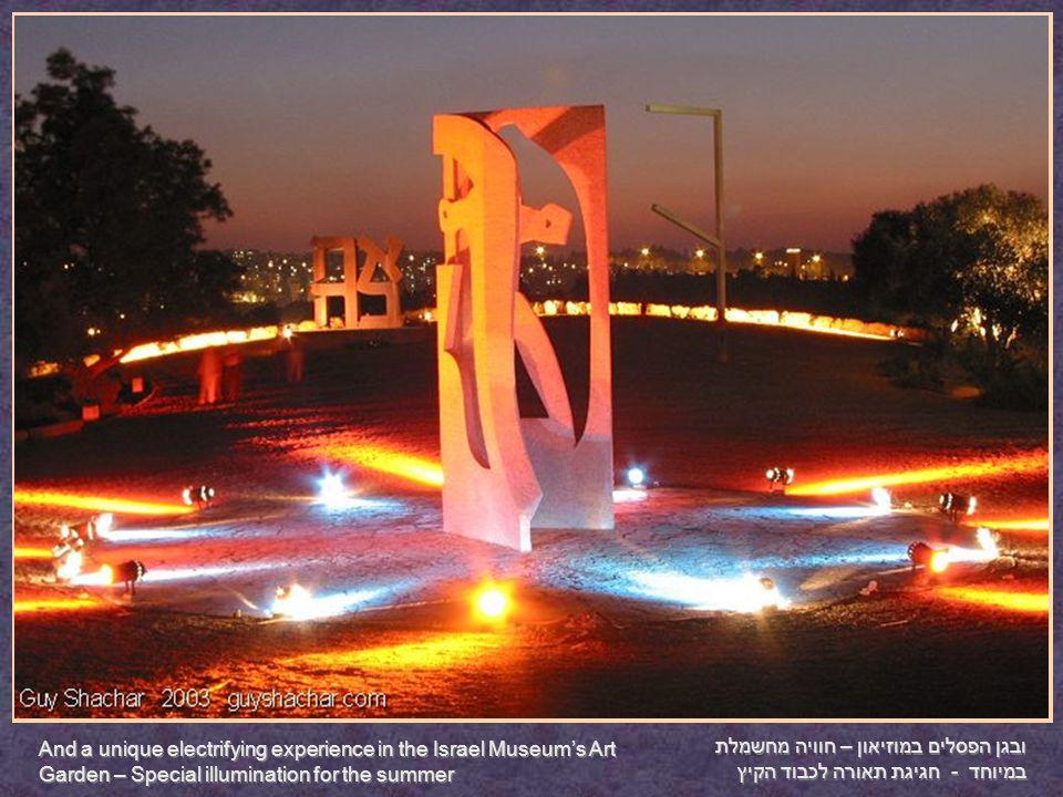 ובגן הפסלים במוזיאון – חוויה מחשמלת במיוחד - חגיגת תאורה לכבוד הקיץ And a unique electrifying experience in the Israel Museum's Art Garden – Special illumination for the summer