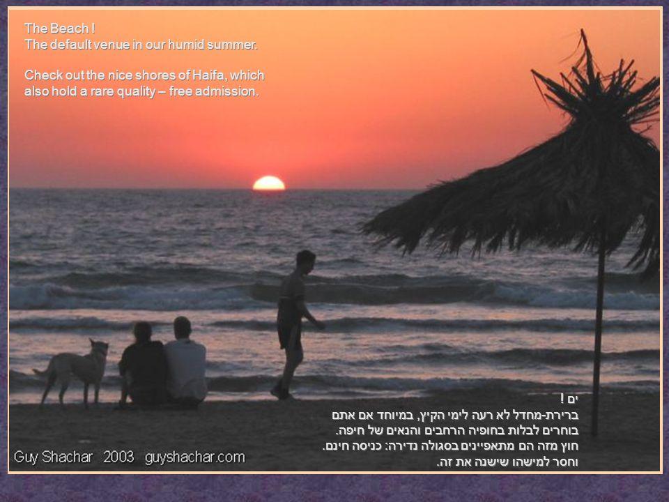 ים . ברירת-מחדל לא רעה לימי הקיץ, במיוחד אם אתם בוחרים לבלות בחופיה הרחבים והנאים של חיפה.