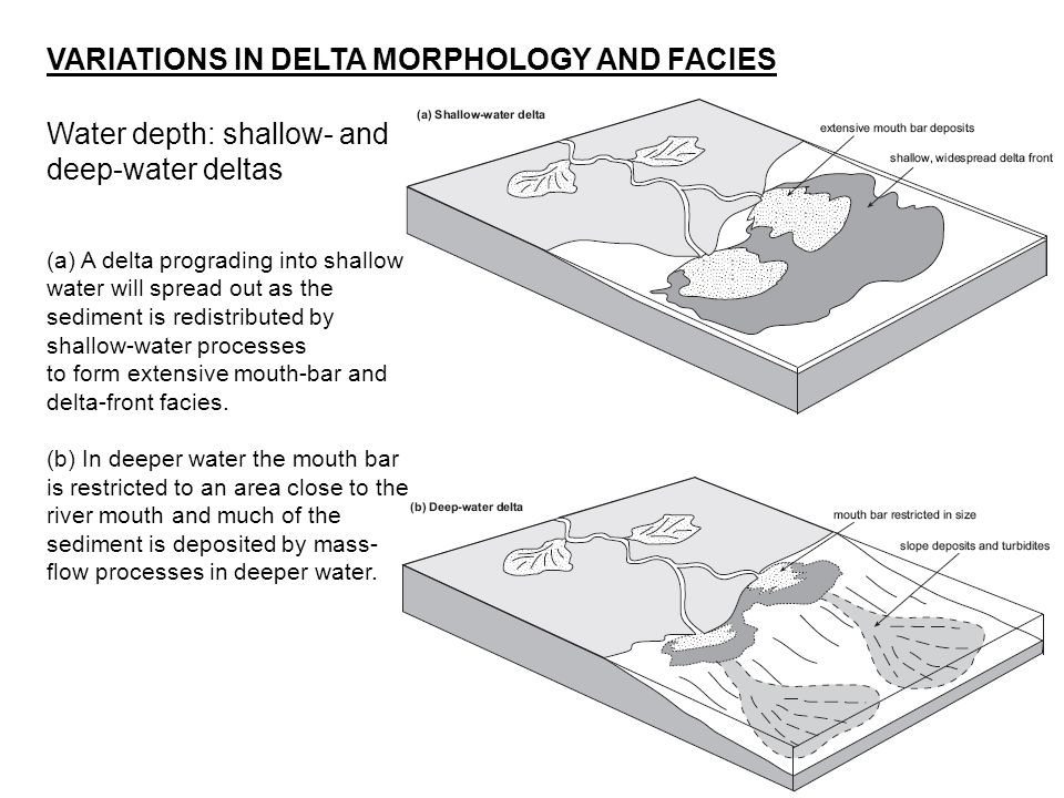 Water depth: shallow- and deep-water deltas VARIATIONS IN DELTA MORPHOLOGY AND FACIES (a) A delta prograding into shallow water will spread out as the