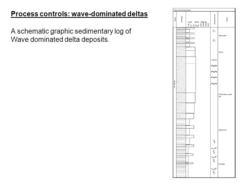 A schematic graphic sedimentary log of Wave dominated delta deposits. Process controls: wave-dominated deltas