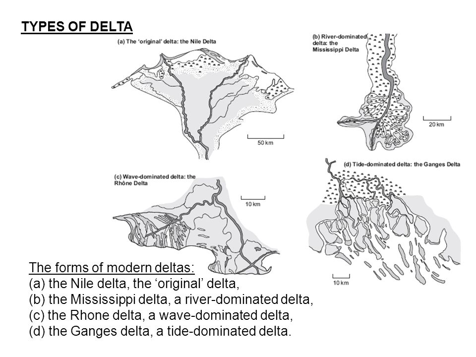 A schematic graphic sedimentary log of riverdominated delta deposits.