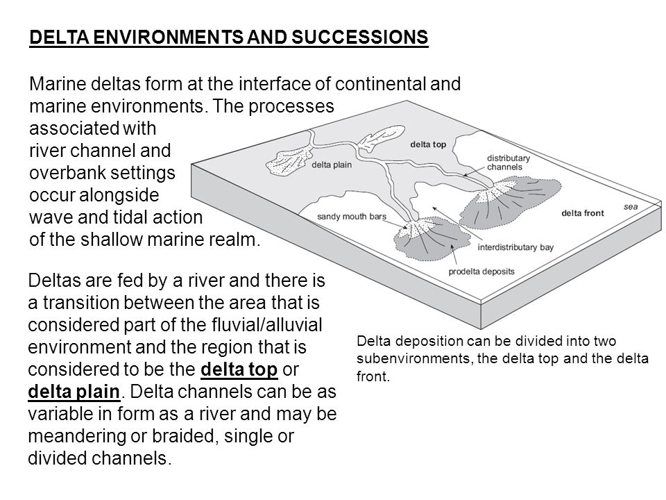 Marine deltas form at the interface of continental and marine environments. The processes associated with river channel and overbank settings occur al