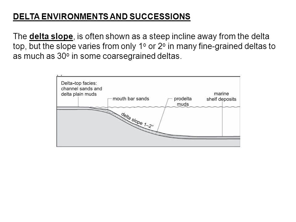 A schematic graphic sedimentary log of Tidedominated delta deposits.