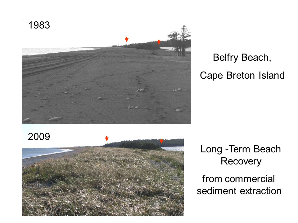 2009 1983 Long -Term Beach Recovery from commercial sediment extraction Belfry Beach, Cape Breton Island