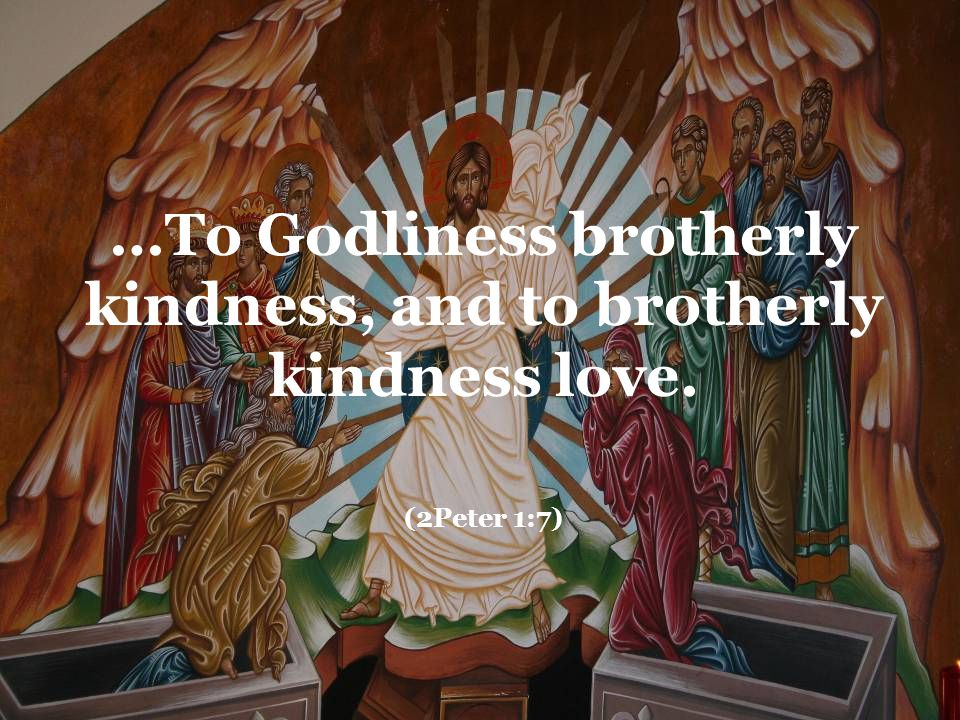 …To Godliness brotherly kindness, and to brotherly kindness love. (2Peter 1:7)
