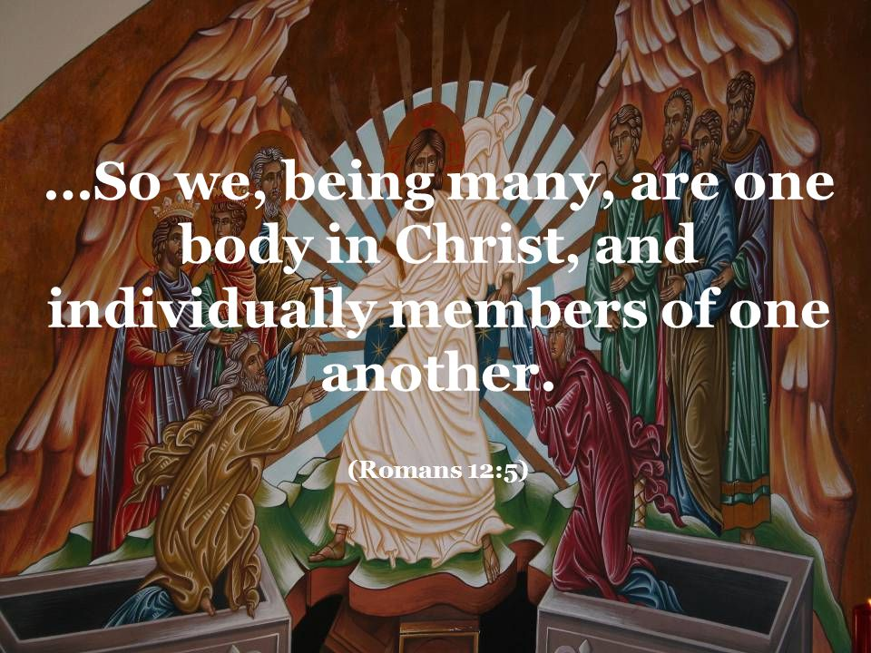 …So we, being many, are one body in Christ, and individually members of one another. (Romans 12:5)