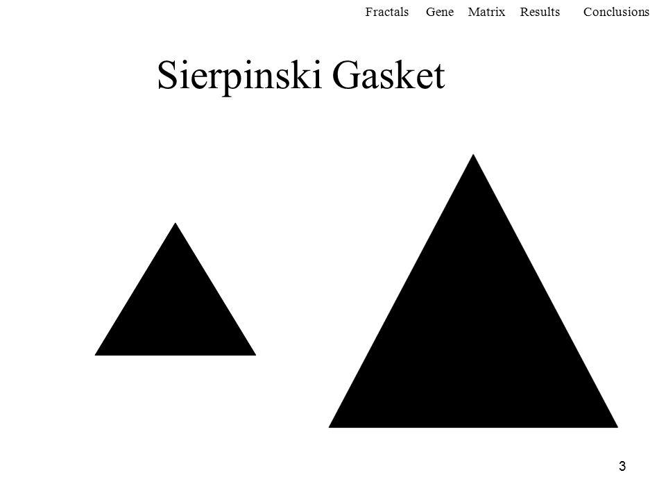3 Sierpinski Gasket FractalsGeneMatrixConclusionsResults