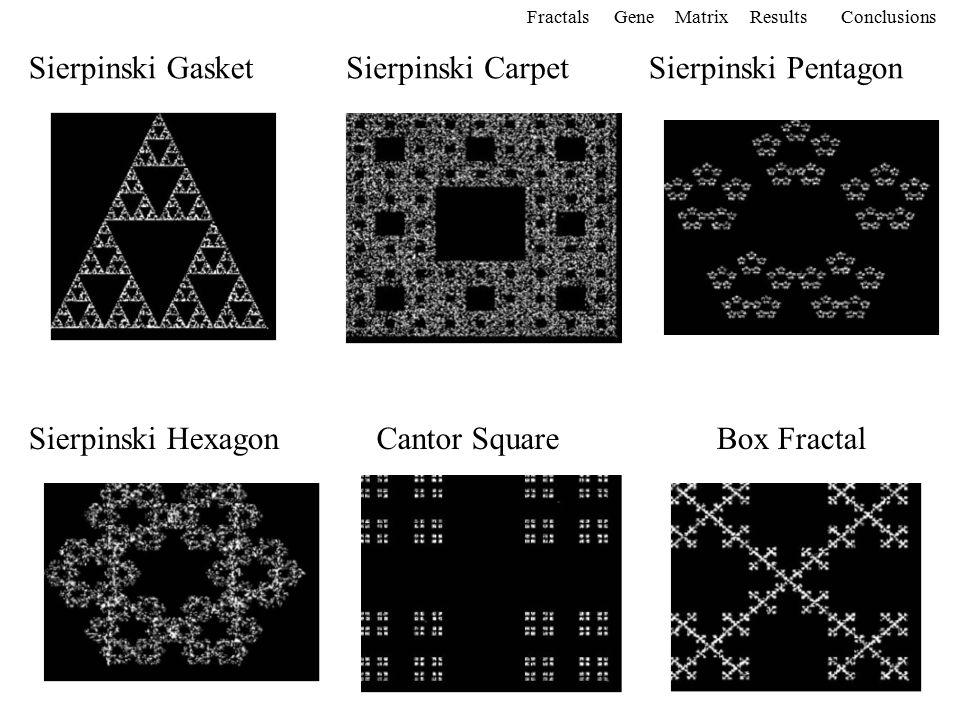6 Sierpinski GasketSierpinski CarpetSierpinski Pentagon Sierpinski HexagonCantor SquareBox Fractal FractalsGeneMatrixConclusionsResults