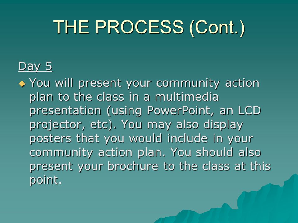 THE PROCESS (Cont.) Day 5  You will present your community action plan to the class in a multimedia presentation (using PowerPoint, an LCD projector, etc).