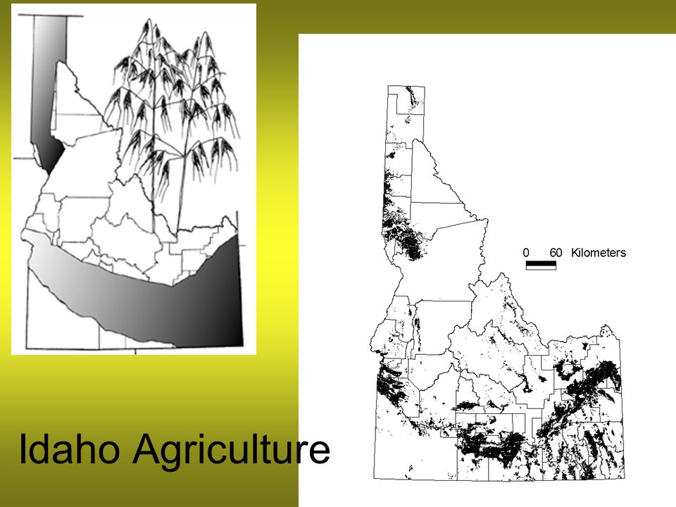 Idaho Agriculture