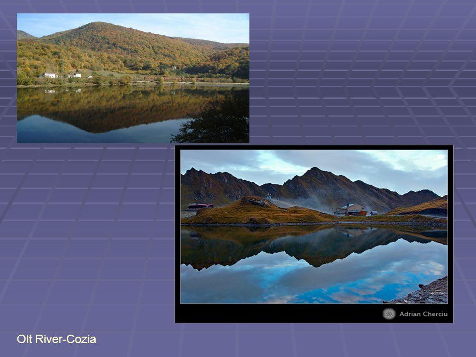 Olt River-Cozia