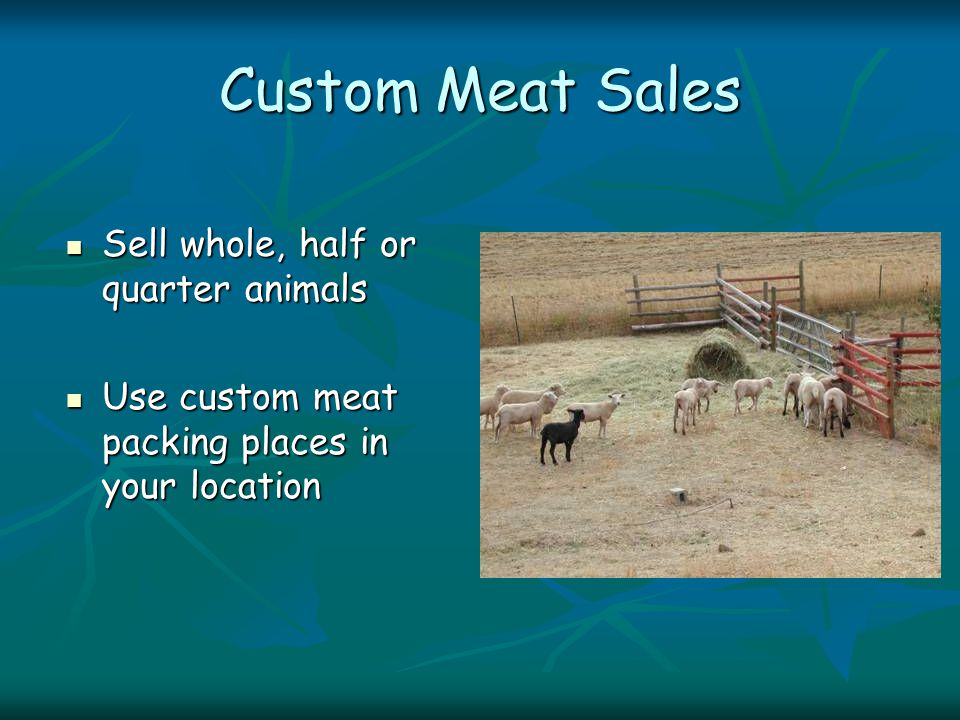 Custom Meat Sales Sell whole, half or quarter animals Sell whole, half or quarter animals Use custom meat packing places in your location Use custom meat packing places in your location