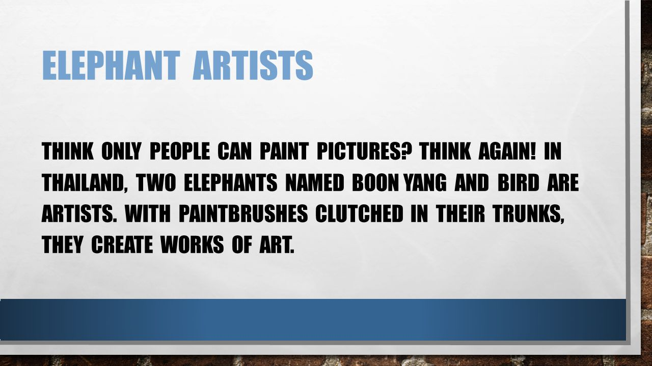 ELEPHANT ARTISTS THINK ONLY PEOPLE CAN PAINT PICTURES.