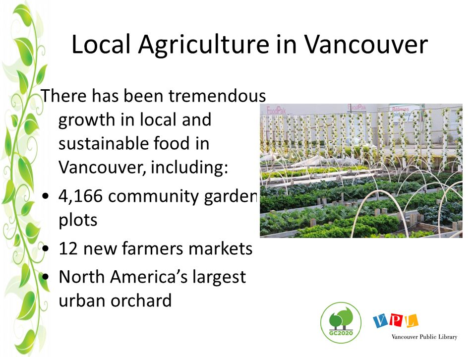 Local Agriculture in Vancouver There has been tremendous growth in local and sustainable food in Vancouver, including: 4,166 community garden plots 12 new farmers markets North America's largest urban orchard