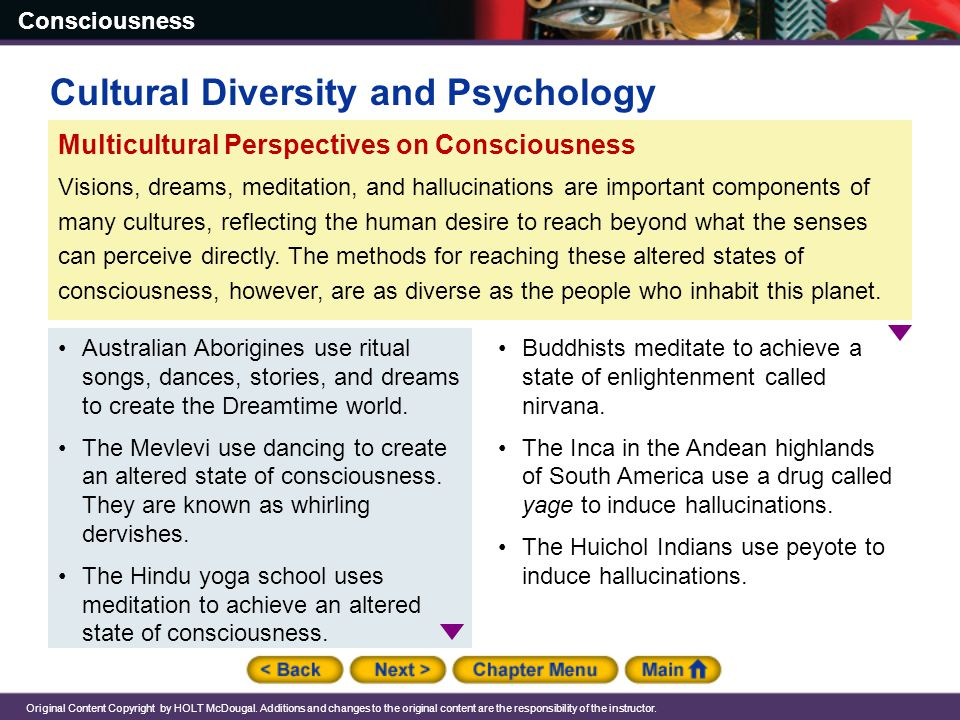 Consciousness Original Content Copyright by HOLT McDougal.