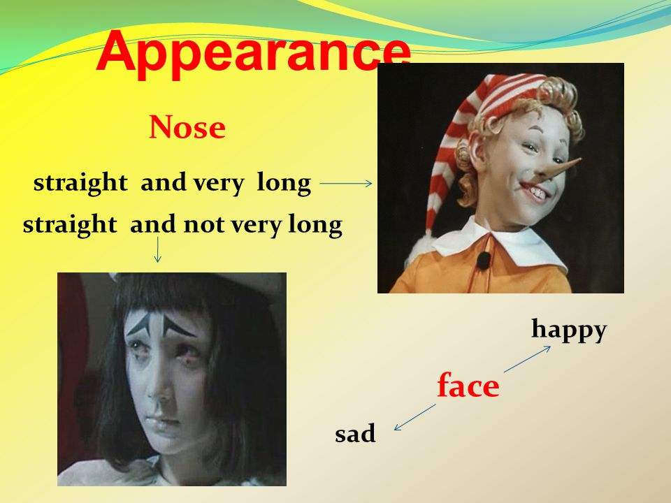 Appearance Nose straight and not very long straight and very long face happy sad