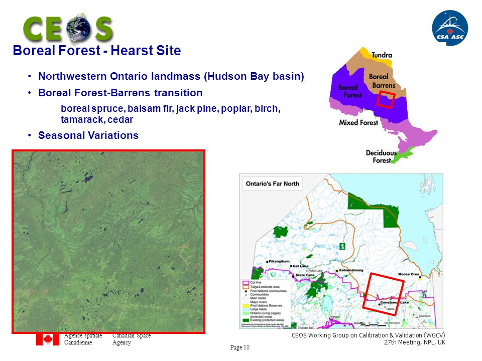 Agence spatialeCanadian Space CanadienneAgency CEOS Working Group on Calibration & Validation (WGCV) 27th Meeting, NPL, UK Page 10 Boreal Forest - Hearst Site Northwestern Ontario landmass (Hudson Bay basin) Boreal Forest-Barrens transition boreal spruce, balsam fir, jack pine, poplar, birch, tamarack, cedar Seasonal Variations