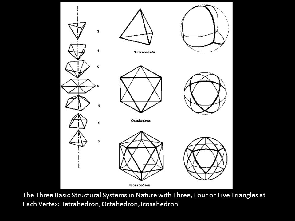 The Three Basic Structural Systems in Nature with Three, Four or Five Triangles at Each Vertex: Tetrahedron, Octahedron, Icosahedron
