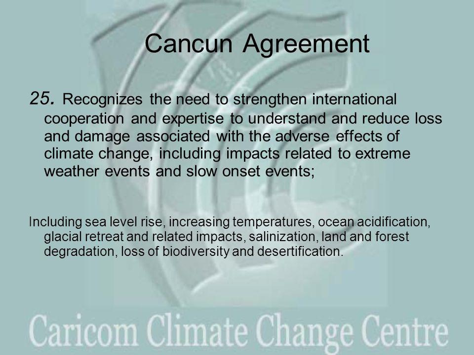 Cancun Agreement 25.