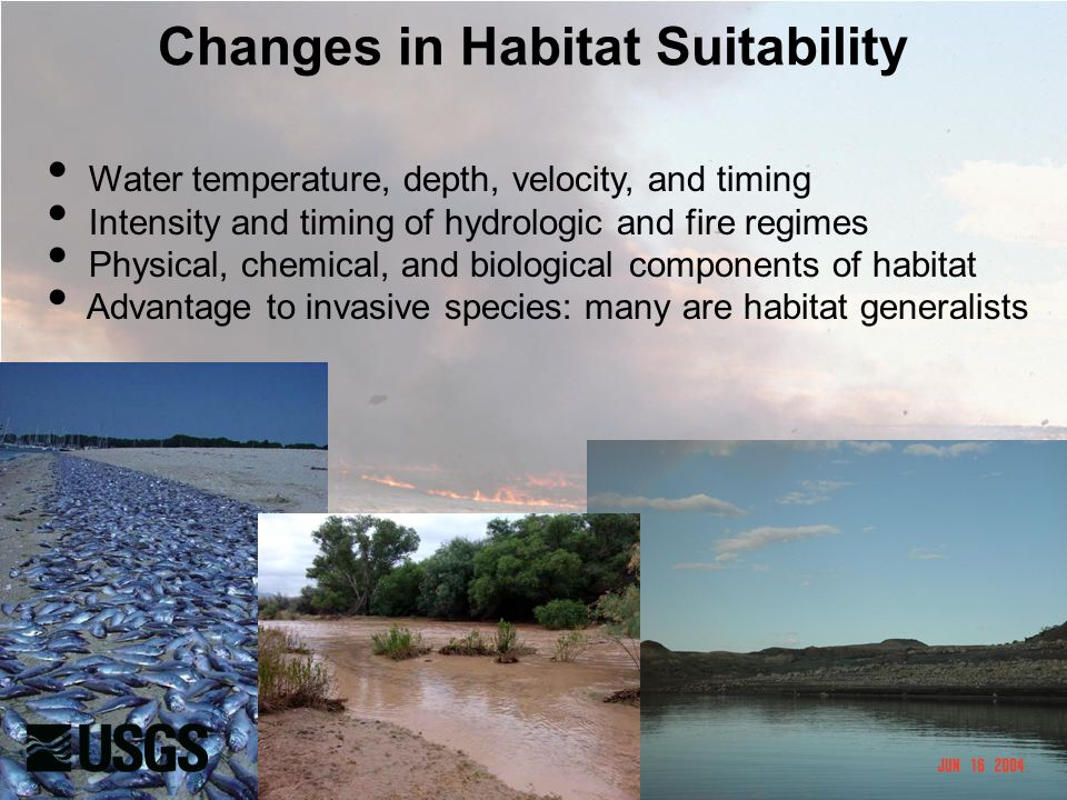 Changes in Habitat Suitability Water temperature, depth, velocity, and timing Intensity and timing of hydrologic and fire regimes Physical, chemical, and biological components of habitat Advantage to invasive species: many are habitat generalists
